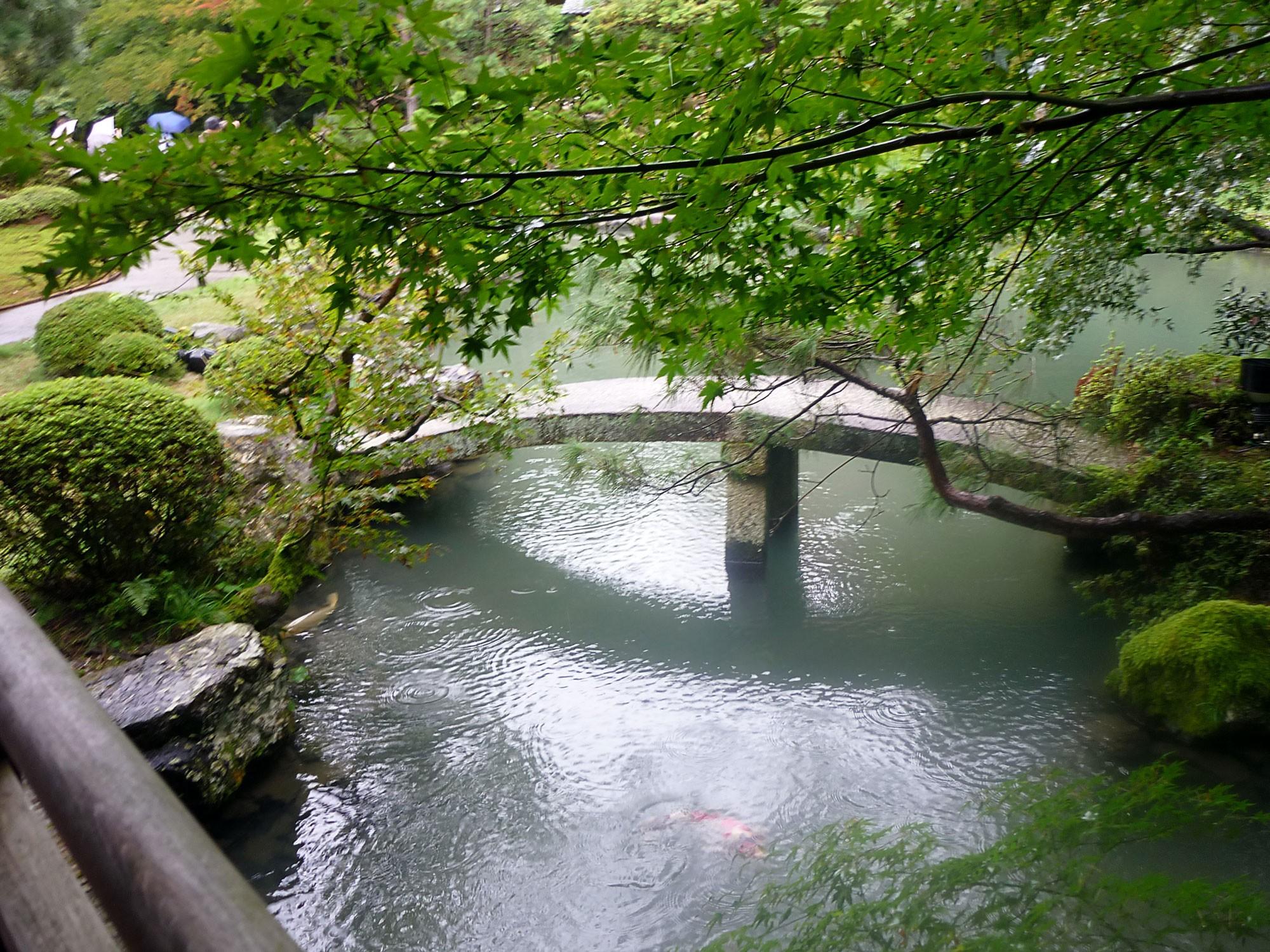 Ukihashi 浮橋Floating Bridge