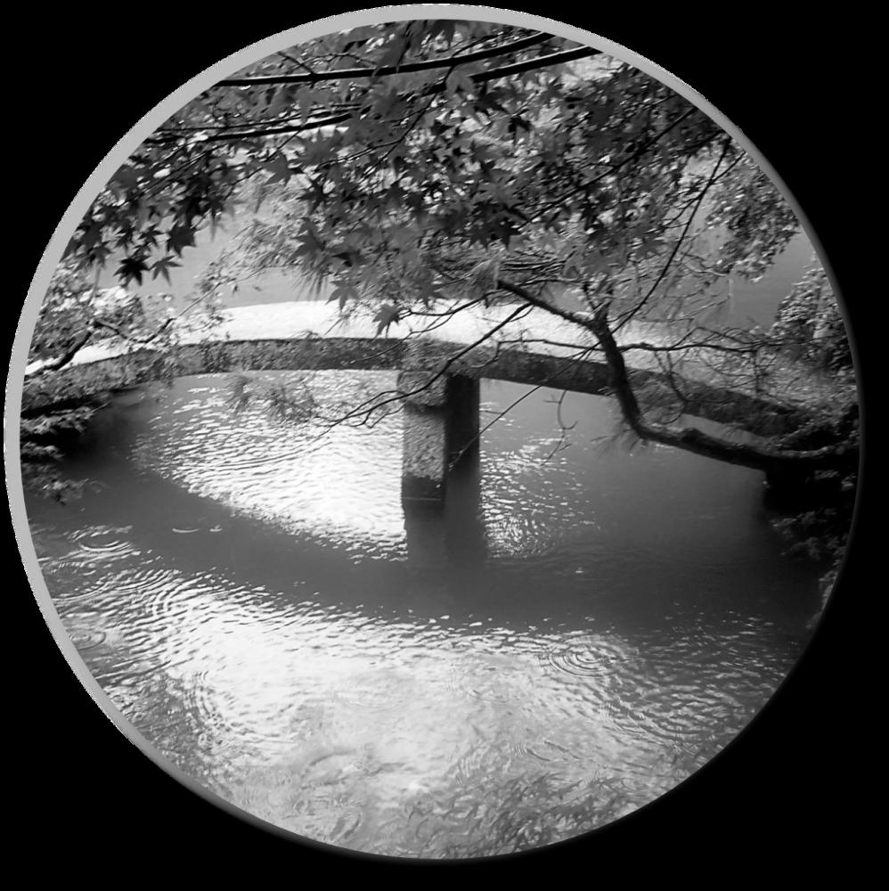 Ukihashi 浮橋 Floating Bridge